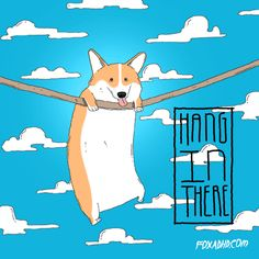 Hang in there lil' Corgi