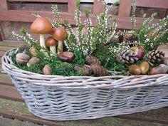 Fall Door Decorations, Fall Decor, Front Garden Entrance, Deco Floral, Autumn Crafts, Harvest, Wicker, Garden Design, Pergola