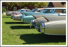1960 Cadillac fins  - the More the Merrier!