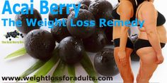 The world is going gaga over Acai berries and calling them the new 'super-food'. In fact, Acai berries have become the talk of the town apart from making headlines and being called the healthiest food on the planet. Diet Plans To Lose Weight, Ways To Lose Weight, Acai Berry Diet, Ways To Be Healthier, Raspberry Ketones, Weight Loss Smoothies, Weight Loss Program, Eating Habits, Healthy Life