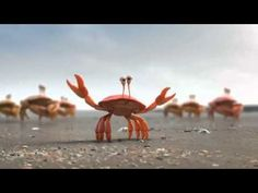 Team Work or Group work by Crabs - Awesome and funny