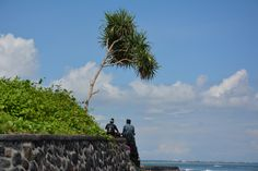 Lunch time in Bali Hindus, Lunch Time, Statue Of Liberty, Bali, Island, Traditional, Mountains, Nature, Travel
