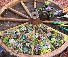 15 Unique and Creative Succulent Planter Ideas - Garden Lovers Club