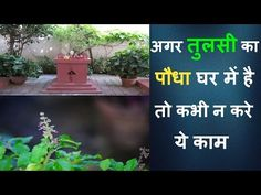 This video includes Good morning video, Quotes, images. Thanks for watching. Disclaimer: All the copyrights of the music in the above video is owned by its. Good Morning Video Songs, Good Morning Gif, Good Morning Coffee, Quotes Images, Rangoli Designs, Youtube, Thankful, Dreams, Music