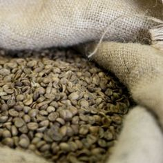 100% Robusta Shops, The 100, Kaffee, Tents, Retail Stores