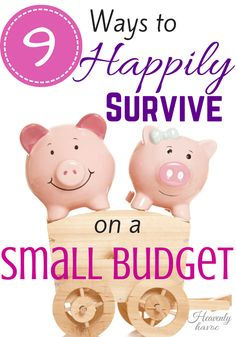 tips to survive on a small budget? DONE! #DoubletheBatch
