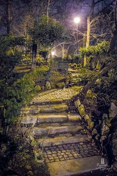 Cismigiu Garden in Bucharest