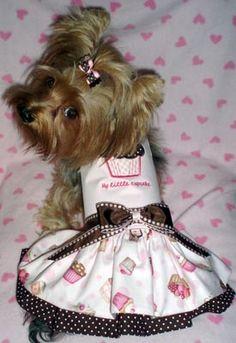 My Little Cupcake Dog Dress .:BēLLäSFãSh!oN:.