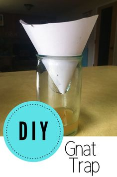 Use this DIY gnat trap to get rid of gnats in the house the easy and natural way with ingredients found in your kitchen. Have they invaded your home? This simple, effective, cheap, natural method of exterminating these pests. Homemade Gnat Trap, Diy Gnat Trap, Gnat Traps, Gnats In Kitchen, How To Get Rid Of Gnats, Kitchen Hacks, Cleaning Hacks, Life Hacks, Lifehacks