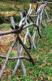 tree branch fence