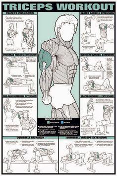 مارس 2013 | Muscle Day