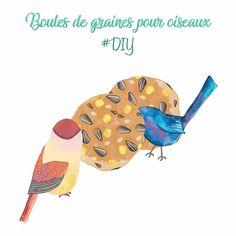 BOULES DE GRAINES POUR OISEAUX #DIY. Pendant les saisons froides, les oiseaux changent de régime alimentaire et deviennent de vrais petits mangeurs de...