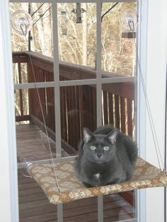 Hey, I found this really awesome Etsy listing at https://www.etsy.com/listing/154167658/curious-cats-window-perch-in-happy