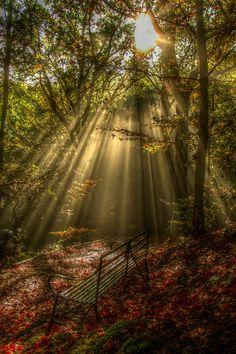 Sun Ray Bench, Ludlow, England