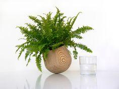 Plant Pot - Product - Elisabet Esteva