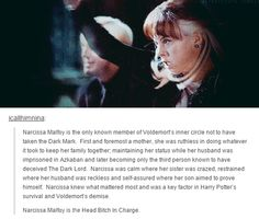 Sorry for the language. Narcissa saved Harry's life and she loved her son and her family more than any other loyalty she had.