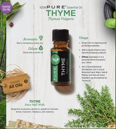 Think of a store that you can buy chemical free products. Now think of a store that can ship you the items you use most directly to you without going to the store. Contact me below and I can introduce you to a new way of life. Melaleuca Essential Oil, Thyme Essential Oil, Essential Oils For Sleep, Essential Oils Cleaning, 100 Pure Essential Oils, Pure Oils, Young Living Essential Oils, Melaluca Products, Melaleuca The Wellness Company