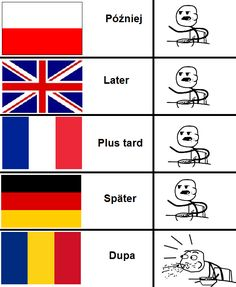 Im romanian and this is just so funny. cuz I speak 4 languages and I want to learn a fifth one Stupid Funny Memes, Wtf Funny, Polish Words, Polish Memes, Weekend Humor, Funny Mems, Wtf Moments, Friend Memes, Best Memes