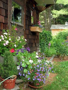 """My shed isn't nearly this cute, Its an """"out house"""", but there's no reason why I couldn't put some pretty flowers around it."""