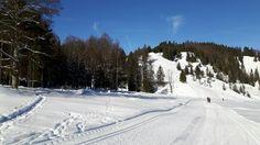 Die #Loipen sind wenn genügend Schnee liegt etliche Kilometer lang... fast einsam kann man in Folge dahingleiten....