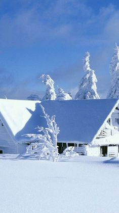 Stunning location. I would be happy here. ##snow #winter
