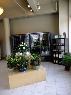 We have two flower coolers in the front portion of the store full of flowers!  Locally grown green gardens greet you as you walk in.  Hand-poured candles and organic Potting Shed Creations gift items sit on a display shelf.
