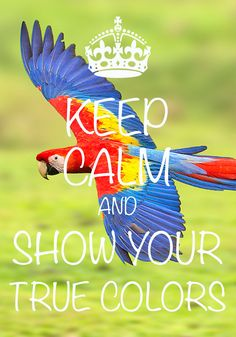 keep calm and show your true colors / created with Keep Calm and Carry On for…