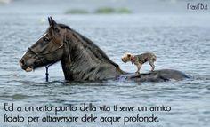 Un amico ama in ogni tempo