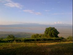 The beautiful Explorean Ngorongoro Lodge or Ngorongoro Crater Lodge