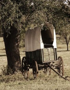 Old Covered Wagon....in the pasture please~~~Annie<3
