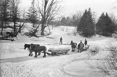 Barb's Family Stories: WORKDAY WEDNESDAY: Grandfather Lewis Penny Doty, Iceman