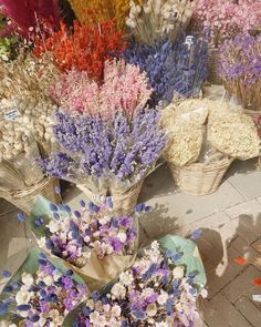Nature Aesthetic, Flower Aesthetic, My Flower, Beautiful Flowers, Fresh Flowers, Dried Flowers, Flower Boquet, Sogetsu Ikebana, Images Murales