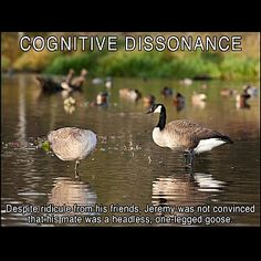 Vicitims of Narcissistic Personality Disorder may develop Cognitive Dissonance