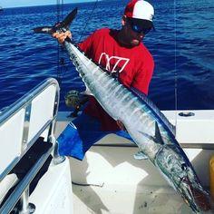 #catchemoutdoors #ballyhoodlures #hst #flogrown #engelcoolers @engelcoolers #onlyinayellowfin #wahoo #candhlures #canyonreels #wahoowednesday #offshore #offshorefishing #troll #trolling #offshoretrolling #oceantamer @oceantamer #fishing #floridakeys #florida #wahoofishing #wahootrolling #ono #onofishing #bahamas #florida #bimini #westend #offshoreangler #offshorelife #danco_sports @danco_sports @fishbomb @crack4fish @pepepesca @candhlures #candhlures @luremin_fishing #lureminfishing by…