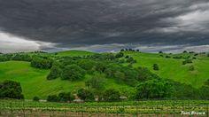 'Cloudy Day 1' Morgan Hill, CA. - Morgan Hills, CA.