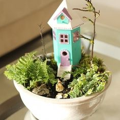 Learn how to make a beautiful indoor fairy house and garden.  A wonderful activity to keep kids busy on a rainy or cold day.