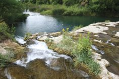 The warm, clear water at Cascade Falls near Hot Springs has been a historic public swimming hole for over 100 years, and provides habitat for rare plants that don't exist in other areas of South Dakota.