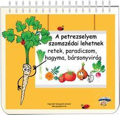 Garden Projects, Planting Flowers, Home And Garden, Herbs, Backyard, Fruit, Green, Plants, Gardening