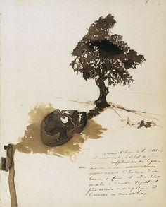 L'Ombre du mancenillier. Dessin (1856) de Victor Hugo.