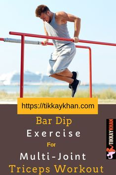 Bar Dip which is weighted parallel best for multi-joint triceps. It is at the top (frontline leader) when it is weighted, it is more convenient when you compare it with dips (bodyweight) for building muscles. Rear Delt Exercises, Knee Exercises, Back Pain Exercises, Group Fitness, Health And Fitness Tips, Fitness Diet, Health Tips, Gym Workouts, At Home Workouts