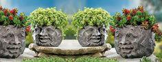 Garden ROCK FACES   Rock Face Planters