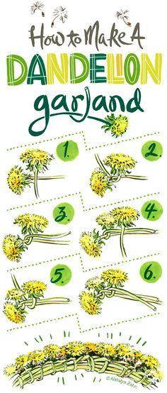 Step by Step how to make a Dandelion Crown or Garland.                                                                                                                                                                                 More