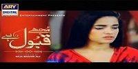 Mujhe Qabool Hai Episode 11 on Ary Digital | 13 May 2015 - AbcDramas