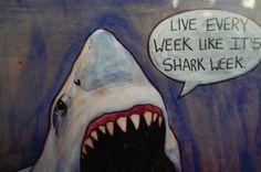 love shark week