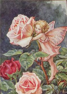 Annons på Tradera: Original Älva FlowerFairies Blomsterälvor - Ovanlig plansch 1944 - ROS