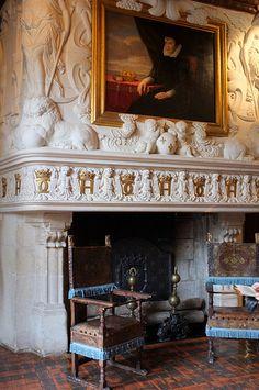 Chambre de Diane de Poitiers, Château de Chenonceau ~ Vallée de la Loire, France. Détail de la cheminée du célèbre sculpteur de la Renaissance Jean Goujon et le portrait de Catherine de Médicis par Sauvage.