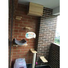 Gimnasio de balcón Cat Stuff, Business, Happy, Home, Cat Toys, Pets, Balconies, Walls, Cat Scratching Post