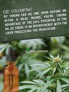16 Best Hempworx CBD Oils images in 2018   Cannabis, Cbd hemp oil
