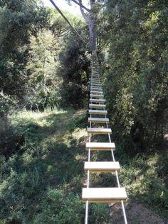 Il Pineto Parco Avventura (Marina di Pisa, Italy): Top Tips Before You Go - TripAdvisor