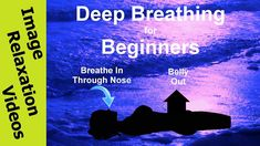 5 Minute Deep Breathing Exercise With Warm-Up - Guided Deep Breathing Exercises Practice your deep breathing (diaphragmatic, abdominal, belly breathing) tech. Relaxation Breathing, Guided Relaxation, Stomach Muscles, Core Muscles, Home Exercise Program, Workout Programs, Exercise Images, Diaphragmatic Breathing, Belly Breathing